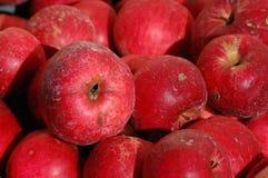 Mele rosse naturali Fotografia Stock Libera da Diritti