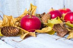 Mele sulla tavola di legno con le foglie di autunno su fondo di legno bianco Immagini Stock Libere da Diritti