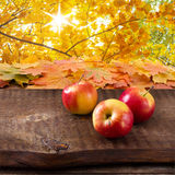 Mele sulla tavola di legno sopra il landsape di autunno Fotografia Stock