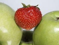 Mele verdi mature fresche Immagine Stock Libera da Diritti