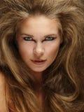 Melena de los leones Fotos de archivo libres de regalías