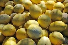 Melões doces amarelos Imagem de Stock Royalty Free