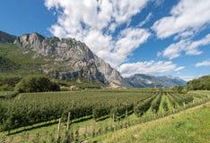 Meleti in valle di Sarca - Trentino Italia Immagine Stock Libera da Diritti