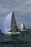 MELGES 24, royalty free stock images