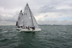 MELGES 24, Royalty Free Stock Photos