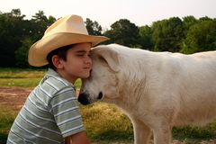 Melhor amigo do cowboy foto de stock royalty free