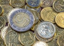 A melhor moeda polonesa Fotografia de Stock