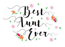 A melhor tia Nunca ilustração stock