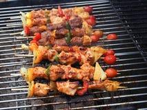 Melhore Prok e BBQ da galinha no gril Imagem de Stock