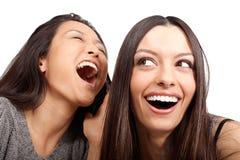 Melhores amigos Imagens de Stock
