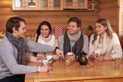 Melhores amigos que bebem o chá quente na cozinha confortável na casa de campo do inverno Foto de Stock Royalty Free
