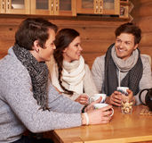 Melhores amigos que bebem o chá quente na cozinha confortável na casa de campo do inverno Imagens de Stock Royalty Free