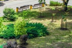 Melhoria e ajardinar da rua da cidade Vista aérea na luz do dia Imagens de Stock