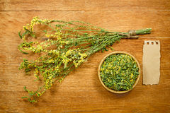 Melilot. Dried. Herbal medicine, phytotherapy medicinal herbs. Stock Photo