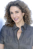 Melina Kanakaredes on the red carpet. Stock Photography