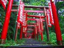 meliny shari kroczy świątynię zdjęcie stock
