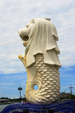 Melion. A symbolic statue or sculture in Singapore Royalty Free Stock Photography