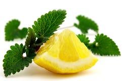 Melis con il limone Fotografia Stock Libera da Diritti
