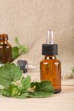 Melissa essential oil Royalty Free Stock Photo