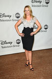 Melissa Joan Hart. At the Disney ABC Television Group Summer 2010 Press Tour - Evening, Beverly Hilton Hotel, Beverly Hills, CA. 08-01-10 royalty free stock image