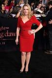 Melissa Joan Hart. At 'The Twilight Saga: Breaking Dawn - Part 1' Los Angeles Premiere, Nokia Theatre L.A. Live, Los Angeles, CA 11-14-11 stock photos