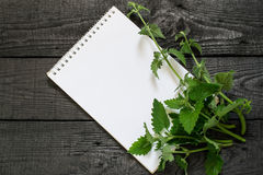 Melissa officinalis and notebook Royalty Free Stock Image
