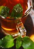 Melissa tea stock image