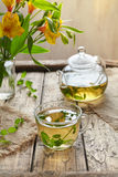 Melissa tea in cup, teapot with fresh leaves and flowers Royalty Free Stock Photos