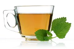 Melissa tea in a glass cup and green lemon balm. Leaves on white background stock photography