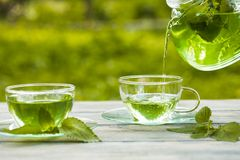 Melissa tea Stock Photos