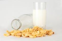 Melk in een glas en cornflakes Stock Afbeelding