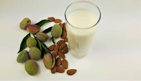 Melk en amandel met bladachtergrond royalty-vrije stock afbeelding