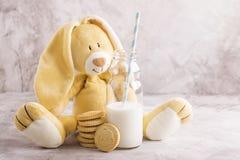 Melk en koekjes over steenachtergrond Stock Afbeelding