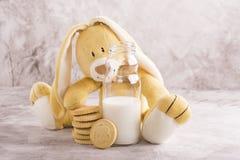 Melk en koekjes over steenachtergrond Royalty-vrije Stock Foto's