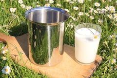 Melk op gras Stock Foto's