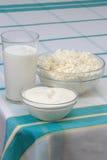 Melk, zure room en kwark Royalty-vrije Stock Foto