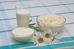 Melk, zure room en kwark Stock Foto