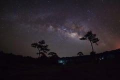 Melkachtig manier en silhouet van boom, Lange blootstellingsfoto, met royalty-vrije stock afbeeldingen