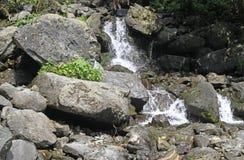 Melkachtige waterval bij meer Ritsa royalty-vrije stock fotografie