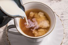 Melken Sie gegossen werden in eine Schale heißen Tee Lizenzfreie Stockbilder