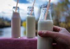 Melken Sie Kefir in einer Glasflasche in seinem Handmädchen Stockfoto
