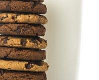 Melkglas en koekjes Stock Foto