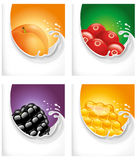 Melkplons met abrikoos, Amerikaanse veenbes, braambes, honing Royalty-vrije Stock Afbeelding