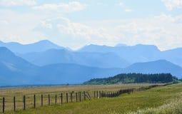 Mellan Calgary och Banff Arkivbilder