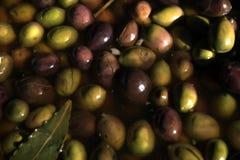 mellanmål Оlives i en saltvatten marinated olivgrön Royaltyfri Fotografi