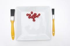 mellanmål för dekoratörlunchmålare Royaltyfri Fotografi