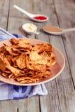Mellanmål för ett parti, sunda chiper med en tortilla, nachos med sa Royaltyfri Bild