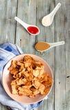 Mellanmål för ett parti, sunda chiper med en tortilla, nachos med sa Fotografering för Bildbyråer