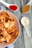 Mellanmål för ett parti, sunda chiper med en tortilla, nachos med sa Royaltyfri Fotografi