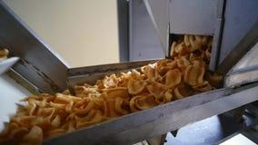 Mellanmålproduktionslinje på fabriken stock video
